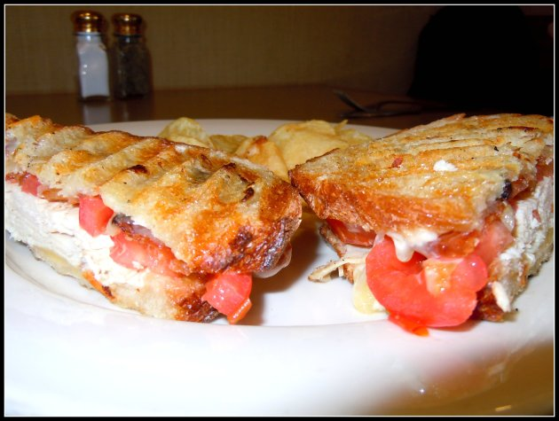 mar7_turkey-panini